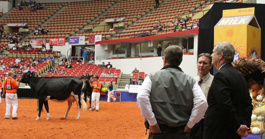World Dairy Expo welcomes the finest cattle and breeders to Madison